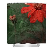 Red Passion... Shower Curtain