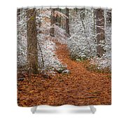 Red Path Shower Curtain