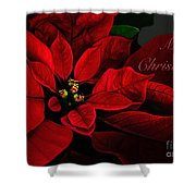 Red Poinsettia Merry Christmas Card Shower Curtain