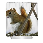Red Pondering Shower Curtain