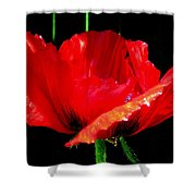 Red Pop Photograph Shower Curtain