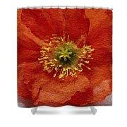 Red Poppy Shower Curtain