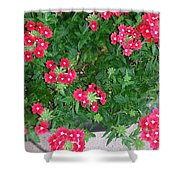 Red Punch Shower Curtain