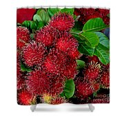 Red Rambutan And Green Leaves Shower Curtain