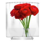 Red Ranunculus Flowers Shower Curtain