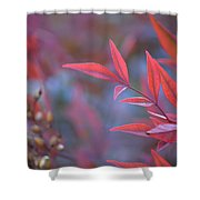 Red Red Leaves Shower Curtain
