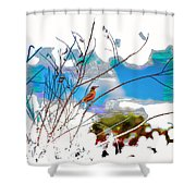 Red Red Robin 2 Shower Curtain