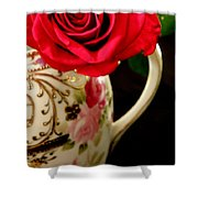 Red Red Rose Shower Curtain