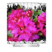 Red Rhododendron Flowers Shower Curtain