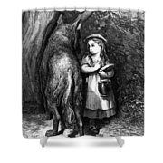 Red Riding Hood Meets Old Father Wolf Shower Curtain