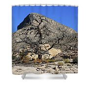Red Rock Canyon Nv 1 Shower Curtain