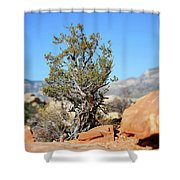 Red Rock Canyon Nv 3 Shower Curtain