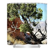 Red Rock Canyon Nv 5 Shower Curtain