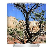 Red Rock Canyon Nv 6 Shower Curtain