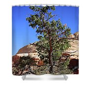 Red Rock Canyon Nv 9 Shower Curtain