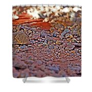 Red Rock Canyon Stones 2 Shower Curtain