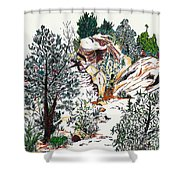 Red Rock Children's Discovery Shower Curtain