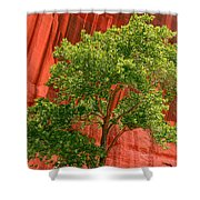 Red Rock Green Tree Shower Curtain