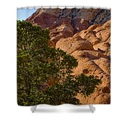 Red Rock Textures Shower Curtain