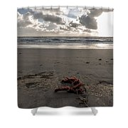 Red Rope On The Beach Shower Curtain
