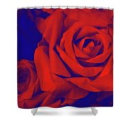 Red, Rose And Blue Shower Curtain