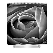 Red Rose In Infrared Shower Curtain