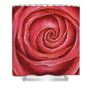 Red Rose Pastel Painting Shower Curtain