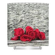 Red Roses Beachside Shower Curtain
