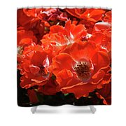 Red Roses Botanical Landscape 1 Red Rose Giclee Prints Baslee Troutman Shower Curtain
