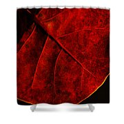 Red Sea Grape Shower Curtain