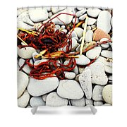 Red Seaweed On Stones Shower Curtain