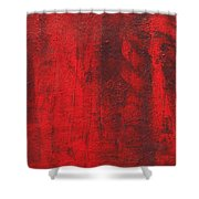 Red Shadows 2001 Shower Curtain