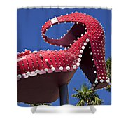 Red Shoe High Heels Shower Curtain