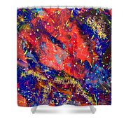 Red Space 15-13 Shower Curtain