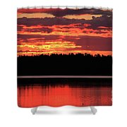 Red Summer Eve Shower Curtain