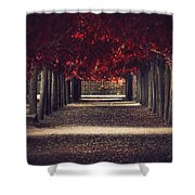 Red Surreal Path  Shower Curtain