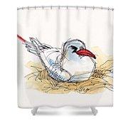 Red-tailed Tropicbird On Aitutaki Shower Curtain