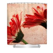 Red Texture 2 Shower Curtain