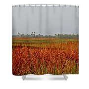 Red Tide Shower Curtain