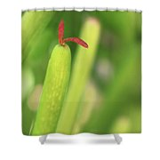 Red Tongue Shower Curtain