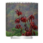 Red Tree In The Rain Shower Curtain