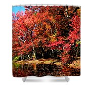 Red Trees By Lake Shower Curtain