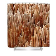 red Tsingy Madagascar 4 Shower Curtain