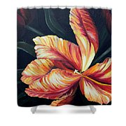 Red Tulip Blossom Shower Curtain