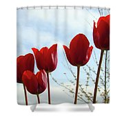 Red Tulip Flowers Spring Artwork Baslee Troutman Shower Curtain