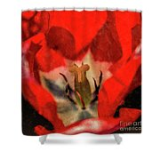 Red Tulip Texture Shower Curtain