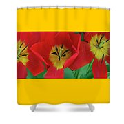 Red Tulip Trio Shower Curtain