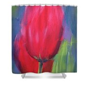 Red Tulips 1 Shower Curtain