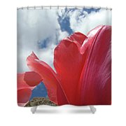 Red Tulips Flowers Art Prints Spring Tulip Garden White Clouds Baslee Troutman Shower Curtain