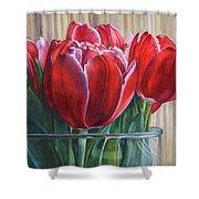 Red Tulips, Glass Rim Shower Curtain